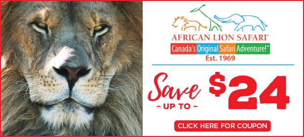 African Lion Safari image contest banner