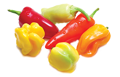 Hot Banana Peppers topping icon