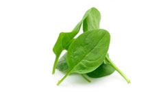 spinach topping icon