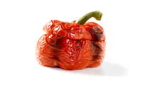 Fire roasted red peppers topping icon